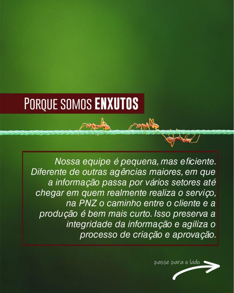 motivo 6 agencia de publicidade pnz
